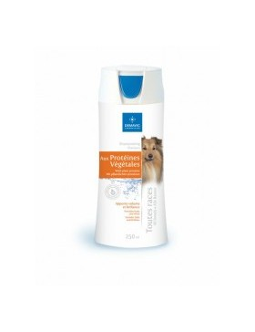 shampooing chien proteine 250ml