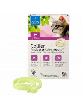 collier insectifuge chat chaton