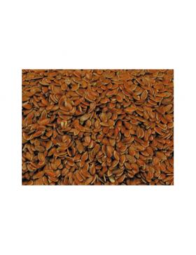 graines de lin 20kg