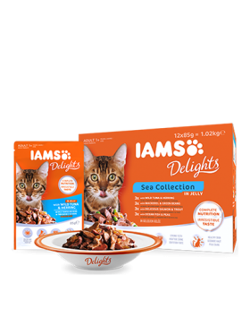 iams chat humide sea collection gelee 12x85 gr