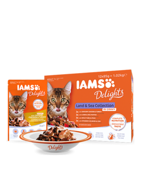 iams chat humide land:sea collection sauce 12x85 gr