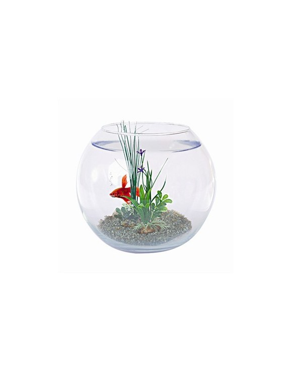 Boule poisson equip e for Poisson aquarium boule